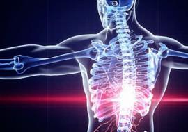9 curiosità che non sapevi sul corpo umano