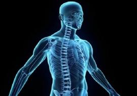 5 nuove sorprendenti scoperte sul corpo umano