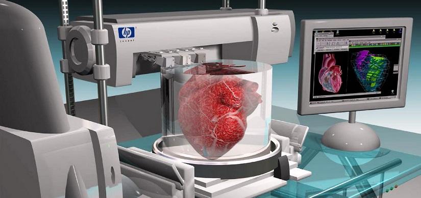 Il cuore 3D: ecco come funziona la nuova scoperta di ingegneria medica