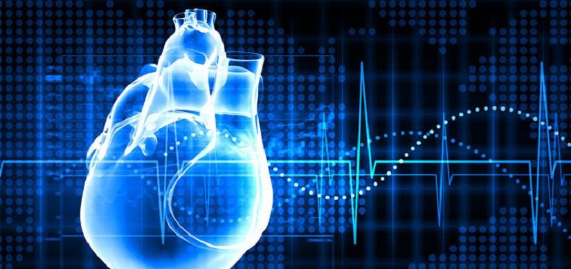Ecco perché non sentiamo il suono del nostro cuore
