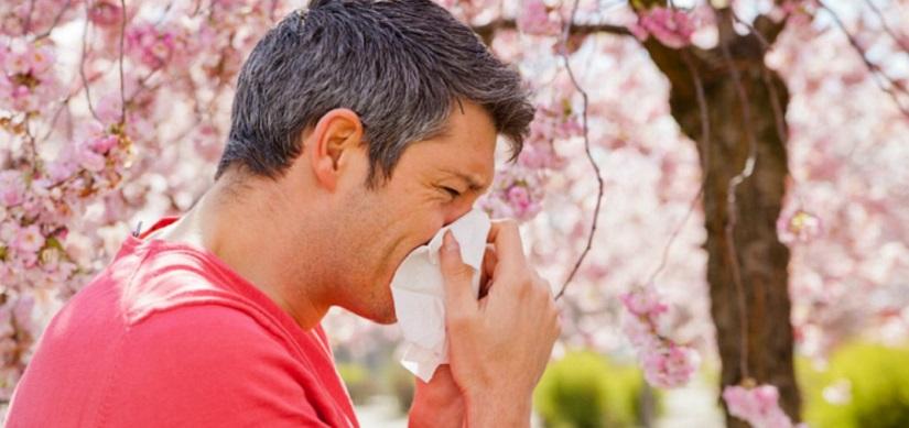 Allergie e donazione di sangue: ecco cosa c'è da sapere